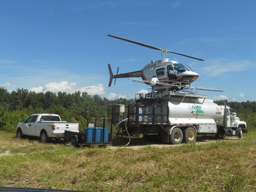 Rock Springs Forestry provides Tree Spraying services to our clients.